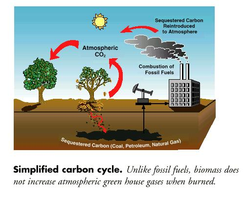 advantages of biomass Advantages and disadvantages of composition and properties of biomass in comparison with coal: an overview.