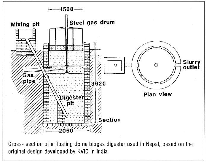 Dieret Biomass