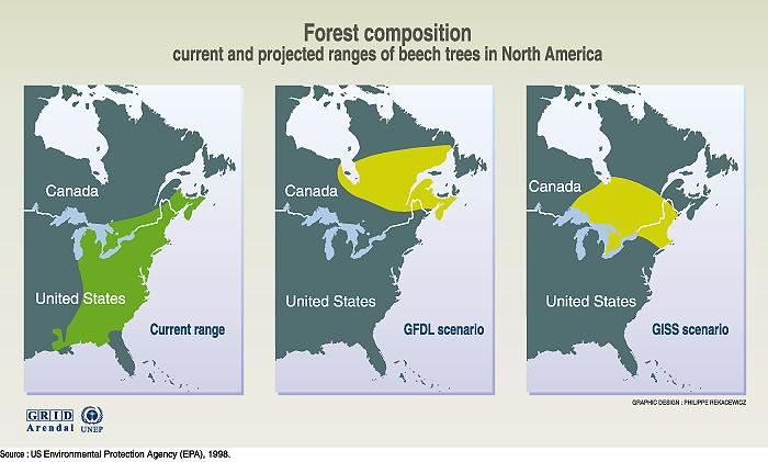 Forest Composition Case Study North America Climate Change - Coniferous forest us map